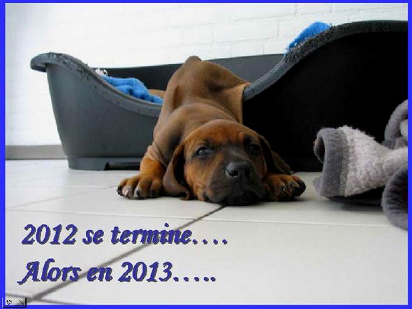 Bon-Reveillon-31