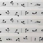 Amour-Sexe-Musique