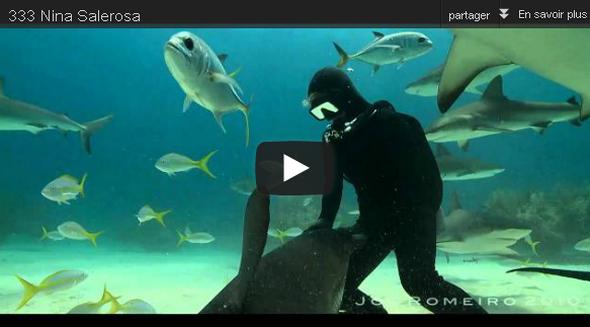 Romeiro-Dresseur-requins