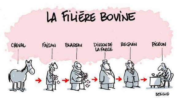 Filiere-Bovine-Pigeons