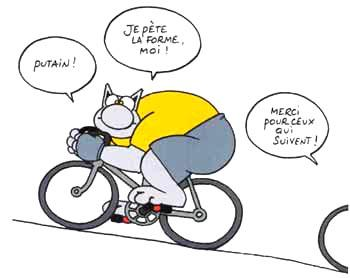 humour-chat-velo