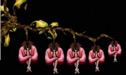 Fleurs-Humaines