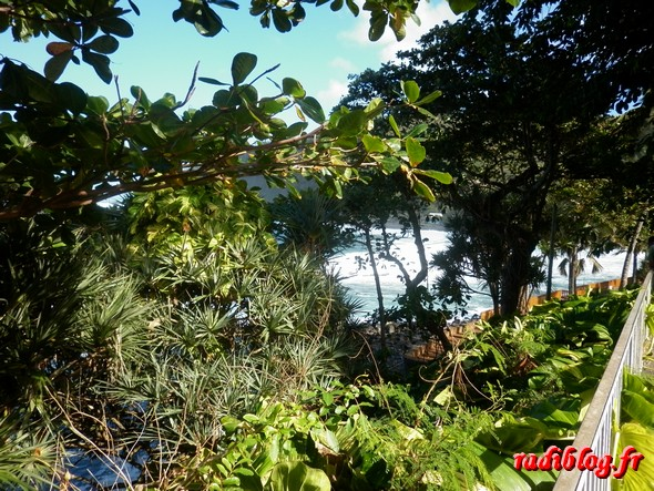 manapany-les-bains