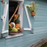 Plats-Reunionnais-Creoles-Carry (25)