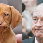 Chirac-Chien